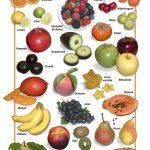 Posters de Alimentos Naturales -Frutas Frescas (9x12)