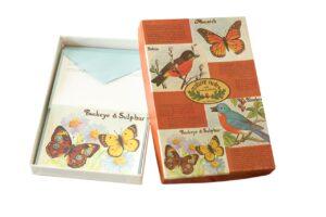 Nature Notes - Birds & Butterflies