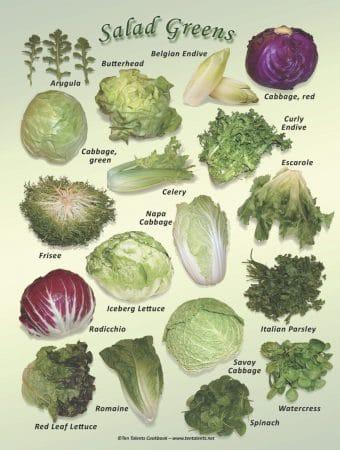 Natural Food Poster (9x12) - Salad Greens