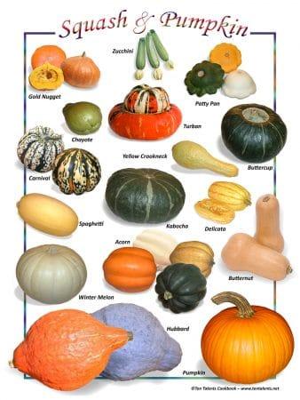 Natural Food Poster (9x12)- Squash & Pumpkin